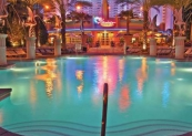 beach_club_pool_flamingo