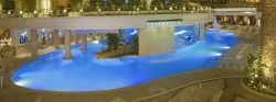 The Tank at Golden Nugget Pool